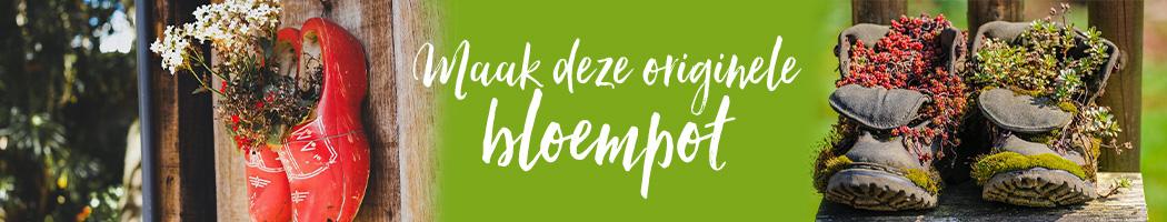 Tussenbanner blog maak een orginele bloempot